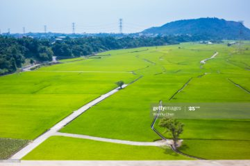 【About Taiwan】Taiwan Being Agricultural Smart – Smart Agriculture 4.0